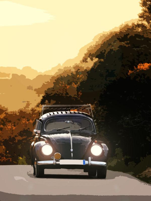 beetle1k